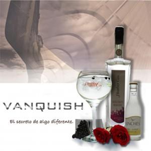Gin Tonic Vanquish