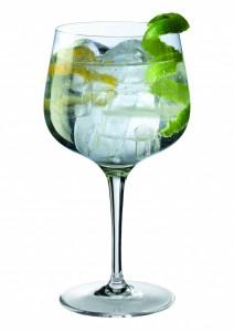 Copa giona Gin Tonic