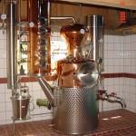 Gin Ö Wannborga, la ginebra ecologica que vino del norte.