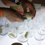 Ginebras Premium para bodas y barras de gintonic
