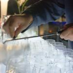 Gin tonic para bodas y eventos aromatizados con botanicos naturales. Barras de gintonic