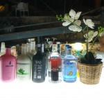 Maridaje de Gin Tonic y comida japonesa